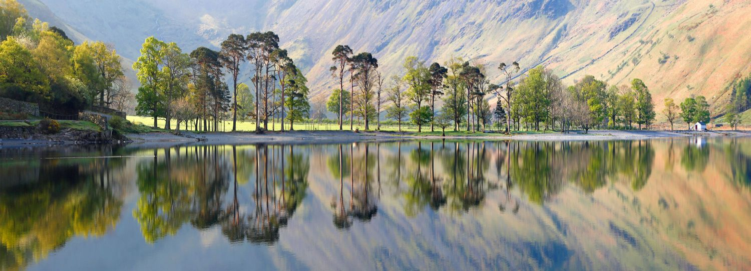 Sunrise over the Buttermere Pines