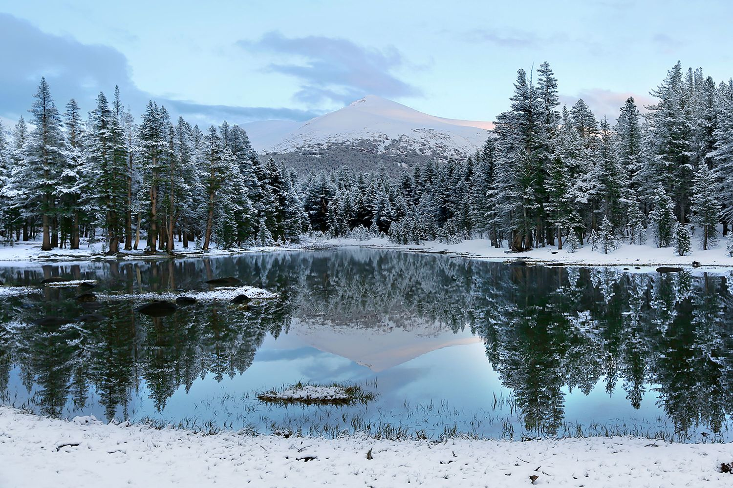 Reflections at Dana Meadows, Yosemite with several inches of autumn snow
