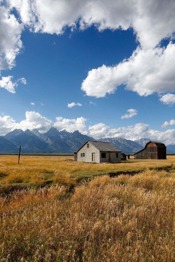 The Moulton Barns on Mormon Row, Grand Teton