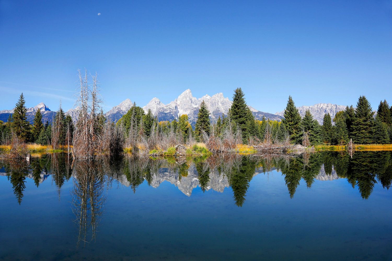 Schwabacher Landing reflections, Grand Teton