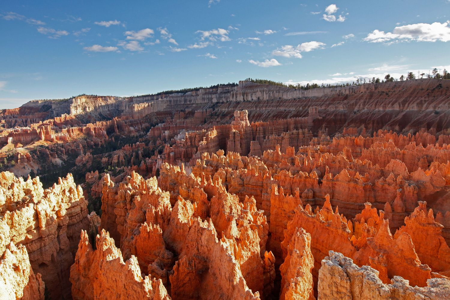 Sunrise Point at Bryce Vanyon