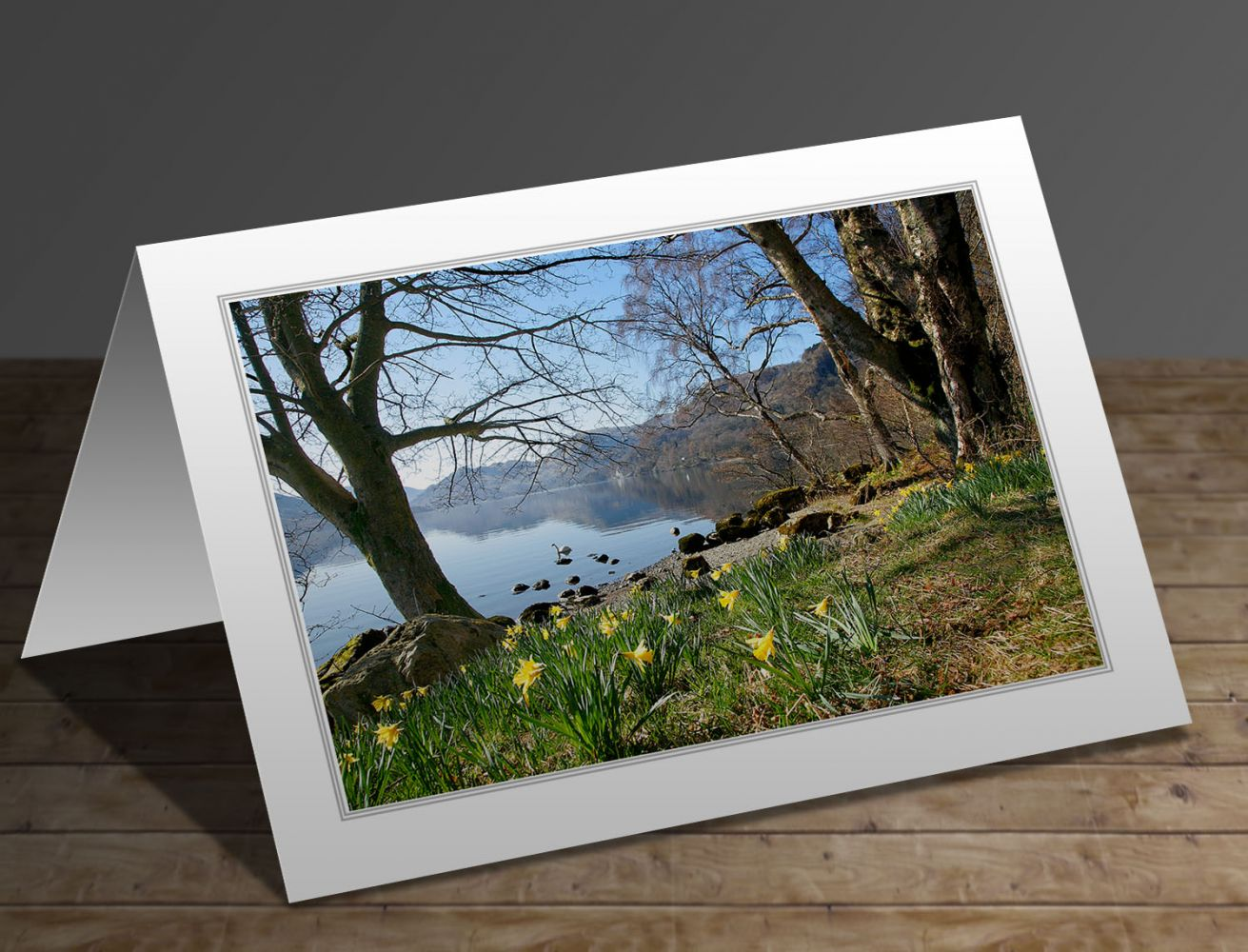 Daffodils at Wordsworth Point, Ullswater Lake District greeting card