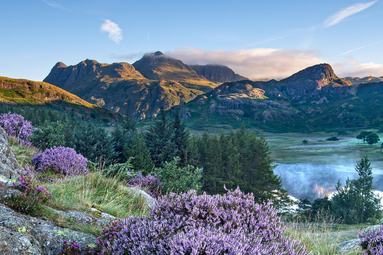 Heather surrounds a misty Blea Tarn and the Langdales