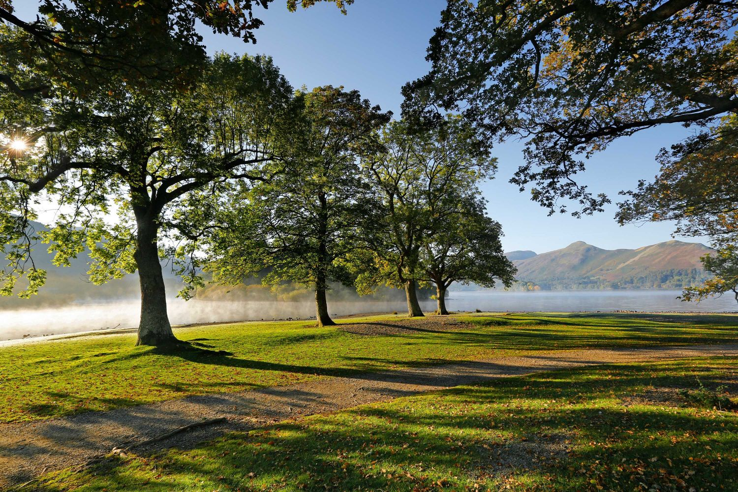 Mist over Strandshag Bay Derwentwater with Catbells seen through the row of trees.